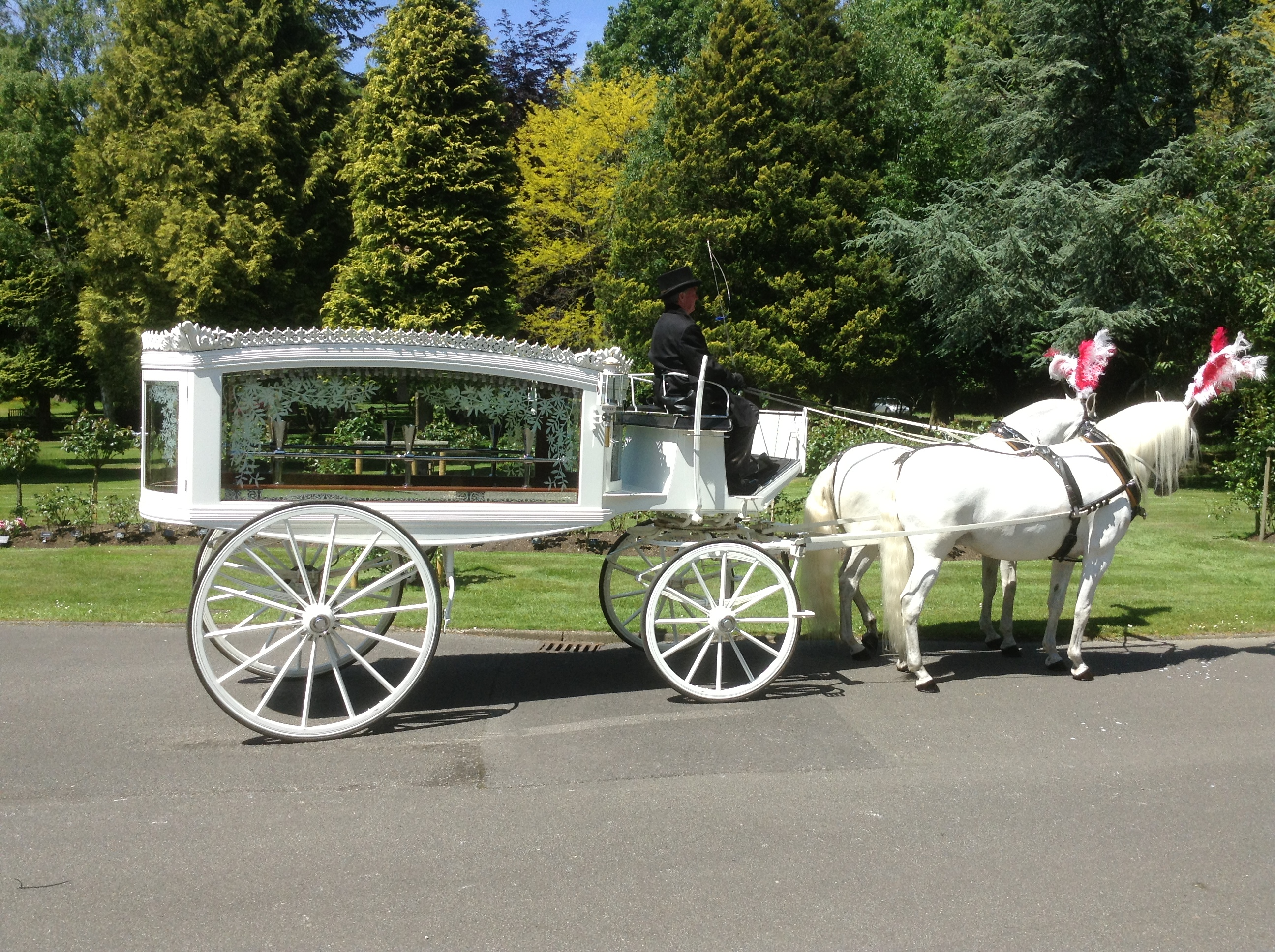 white horse and carriage